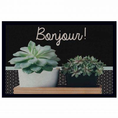 Tapis d'entrée rectangle - Bonjour les succulentes ! - 40 x 60 cm
