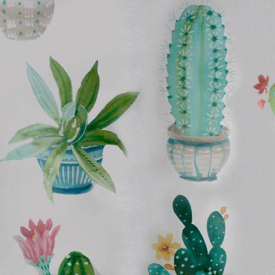 Toile cirée au mètre - Largeur 140 cm - Costa rica, cactus et succulentes